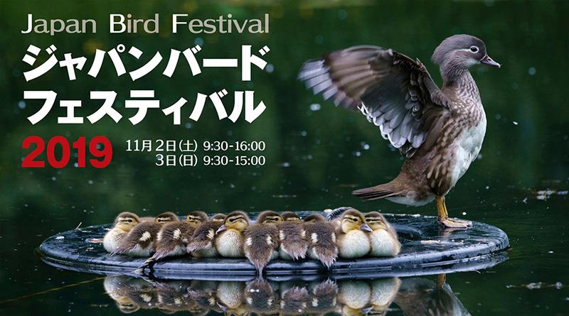 「ジャパンバードフェスティバル2019」に出展します